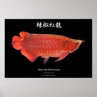 Poster of suparetsudoarowana