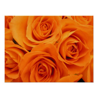 Poster, Orange Roses Poster