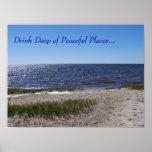 Poster pacífico de la línea de la playa