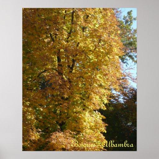 poster paisaje bosque de la Alhambra Granada