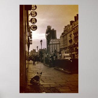 Poster parisiense del perro
