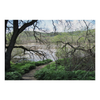 Poster: Path to the Salinas River in March Poster
