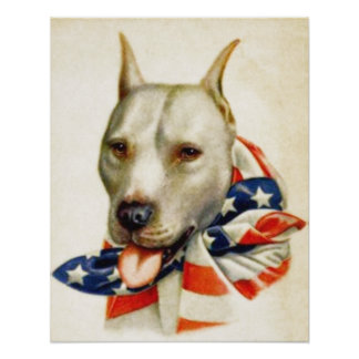Poster patriótico americano de la guerra del perro