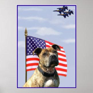 Poster patriótico del pitbull