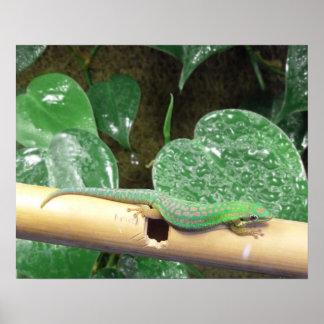 Poster perezoso del Gecko del día