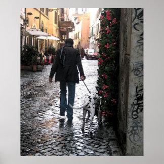 Poster - perro que camina en Trastevere (color)