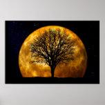 Poster-Personalizable de la luna y del árbol
