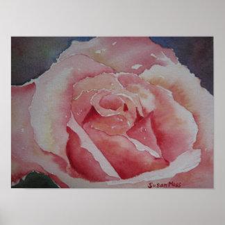 POSTER Pink Rose