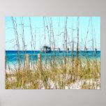 Poster pintado hierba de la foto de la playa