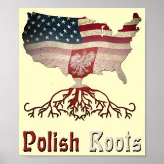 Poster polaco de las raíces del americano