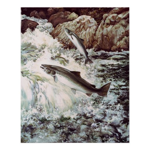 poster por aguas arriba que nada de color salmón