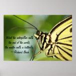 Poster principal de la mariposa