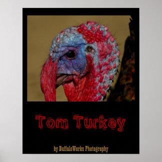 Poster principal de Turquía