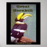 Poster principal del Hornbill