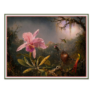 Poster/Print: Cattleya Orchid & Three Hummingbirds Poster