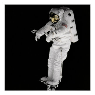Poster/Print: Spacewalk Poster