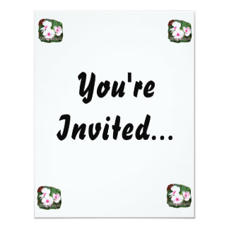 Poster Purple Pinwheel Flowers w text Card