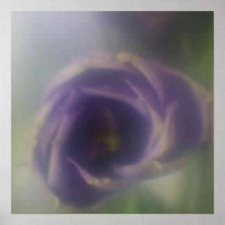 Poster púrpura de la flor