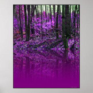 Poster púrpura de las reflexiones