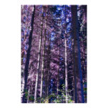 poster púrpura de maderas