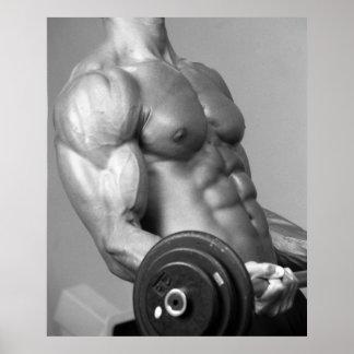 Poster que se encrespa #5 del bíceps