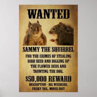 Poster querido con la ardilla