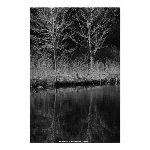 POSTER Reflections B&W By John A Sylvester -...