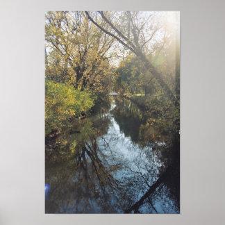 Poster reflector de los árboles del agua