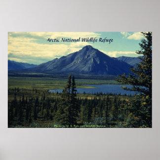 Poster reserva nacional ártica