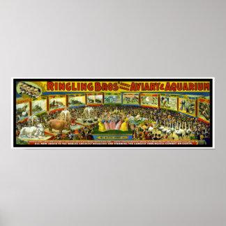 "Poster Ringling Brothers Circus ""Aviary Aquarium"""