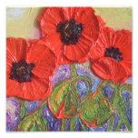 Poster rojo de la bella arte de las amapolas de Pa Fotos