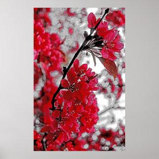 Poster rojo de la flor - contexto gris claro