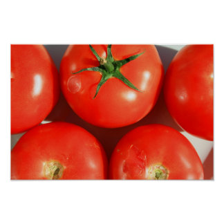 Poster rojo de los tomates