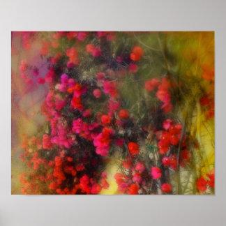 Poster rojo del Bougainvillea del impresionismo Póster