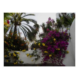Poster rosado de la pared de Bouganvilla de las pa