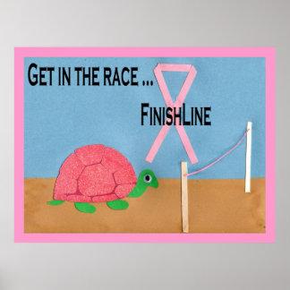 Poster rosado de la raza de la tortuga