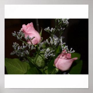poster rosado de los rosas