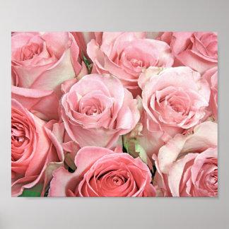 Poster rosado de los rosas póster