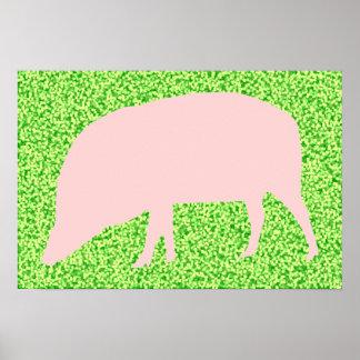 Poster rosado del cerdo