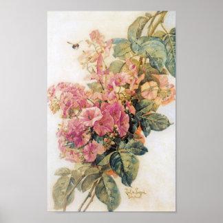 Poster rosado del vintage de las correhuelas