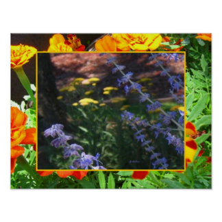 Poster - Russian Sage and Marigolds