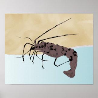 Poster rústico del camarón