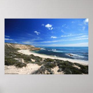Poster salvaje hermoso de la costa costa