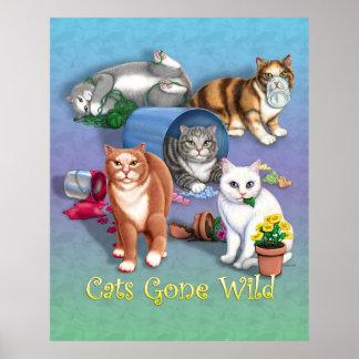 Poster salvaje ido gatos