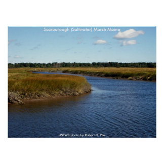 Poster / Scarborough (Saltwater)  Marsh, Maine