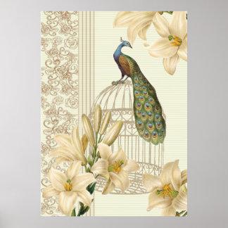 Poster sofisticado del pavo real del vintage y del