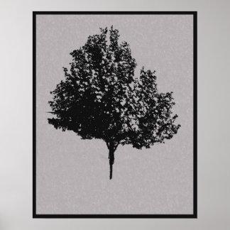 Poster solitario del árbol