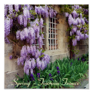 POSTER - Spring  - Tournon France