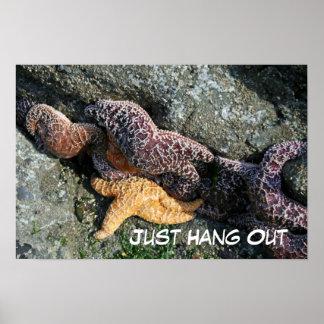 Poster:  Starfish