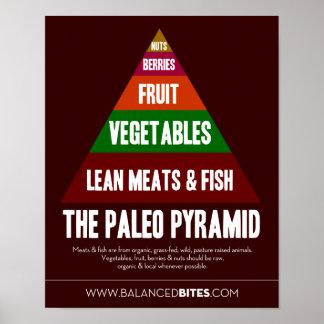 Poster: The Paleo Pyramid